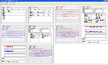 pulsox-300i 全レポート表示画面